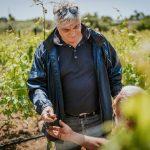 antonio intiglietta in contrada mitriano vineyard